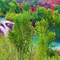 Looking Down On Navajo Falls And Havasu Creek by Gio