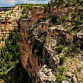 Looking Down The Inside Face Of The Grand Canyon by Susan Vineyard