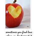 Looking For Love by Traci Cottingham