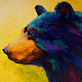 Looking On II - Black Bear by Marion Rose