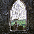 Looking Out Fuerty Church Roscommon Ireland by Teresa Mucha
