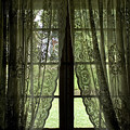 Looking Out The Window Of A Log Cabin by Todd Gipstein