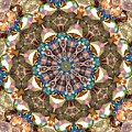 Looking Through The Kaleidoscope by Yvette Pichette
