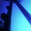 Looking Up At The Mast Of The Dalton Shipwreck by Sami Sarkis
