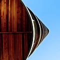 Looking Up I by Grebo Gray