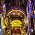 Looking Up In Brag Cathedral by Roberta Bragan
