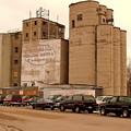 Looks Like Grain by Curtis Tilleraas