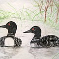 Loons Watching by Sandra Lunde