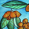 Loquats I by Kim Nelson