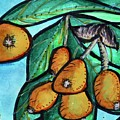 Loquats II by Kim Nelson