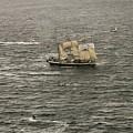 Lord Nelson Enters Sydney Harbour by Miroslava Jurcik