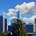 Los Angeles And Palm Trees by Mariola Bitner