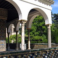 Los Jardines Del Real Alcazar by Lindsey Orlando