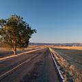 Lost Highway by Julia McHugh