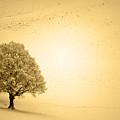 Lost In Snow - Winter In Switzerland by Susanne Van Hulst