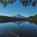 Lost Lake Reflections Of Mount Hood by Brenda Jacobs