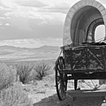 Lost On The Oregon Trail by Karis Tsolomitis