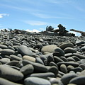 Lots Of Rocks by Diane Greco-Lesser