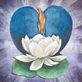 Lotus Heart Light by Jo Thompson