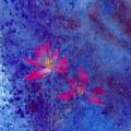Lotus II by Mui-Joo Wee