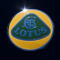 Lotus by John Zawacki