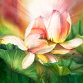 Lotus - Spirit Of Life by Carol Cavalaris