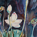 Lotus Study II by Xueling Zou