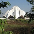 Lotus Temple by David L Griffin