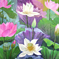 Lotus Trio by Lian Zhen