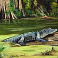 Louisiana Gator by Stephen Broussard