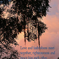 Louisiana Moss In Sunset Ps.85 V 10 by Linda Phelps