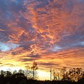 Louisiana Sunset 1 by Adele Fulcher