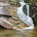 Louisville Brook - Bartlett  New Hampshire Usa by Erin Paul Donovan
