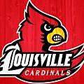 Louisville Cardinals Barn Door by Dan Sproul