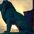 Louve Lion by John Hansen