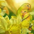 Love Among The Daffodils by Carol Cavalaris