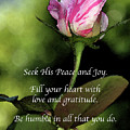 Love And Gratitude by Kirt Tisdale