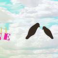 Love Birds Love Line by Priscilla Wolfe