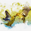 Love Birds by Don Kuing