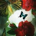 Love Blossoms by Maria Urso