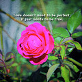 Love Does Not Need To Be Perfect Motivational Quote by Daniel Ghioldi