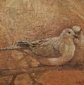 Love Doves by Sandra Quintus