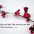 Love Each Other Red Single Stem  by Kirt Tisdale