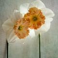 Love In Bloom by Marina Kojukhova