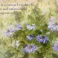 Love Is A Canvas - Nigella Damascena by Julia Springer