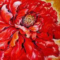 Love Is Forever  Red Peony by Marcia Baldwin