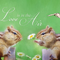 Love Is In The Air by Lori Deiter