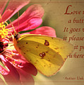 Love Is Like A Butterfly by Karen Beasley