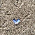 Love by Karen Scott