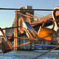 Love Locks - Brooklyn Bridge - New York City by Joann Vitali